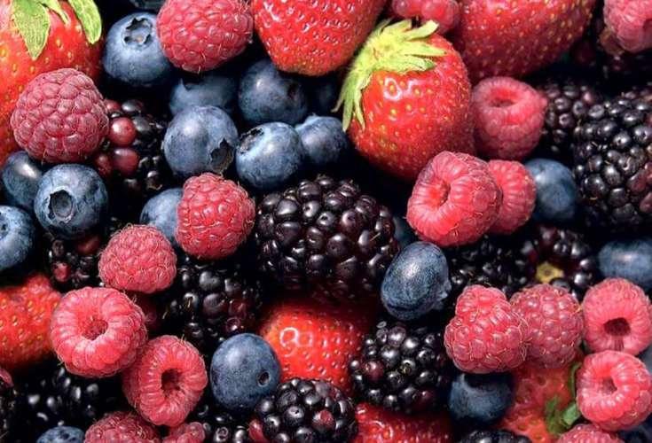 antioxidanter hvad er det